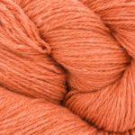 Bio_Balance_17 Orange